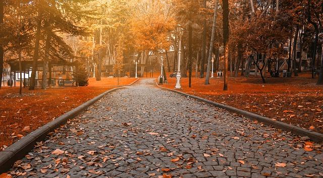 road-1695534_640